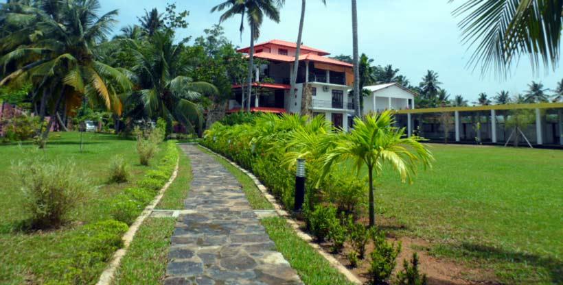 Design and Planting Green Garden