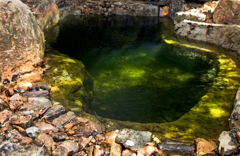Green Garden Natural Pool